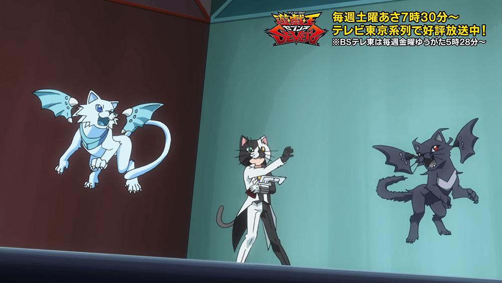 ブルーアイズ・ホワイト・キャット(青眼の白猫) レッドアイズ・ブラック・キャット(赤眼の黒猫)